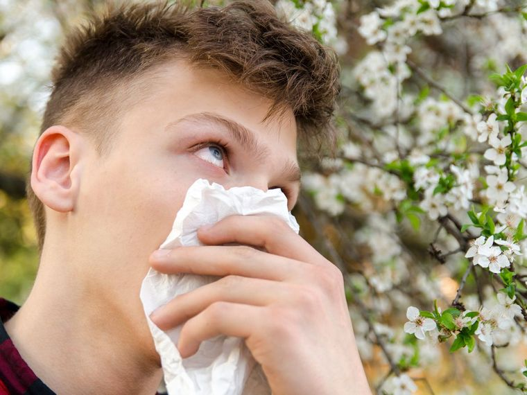 alergia al polen cualquier persona