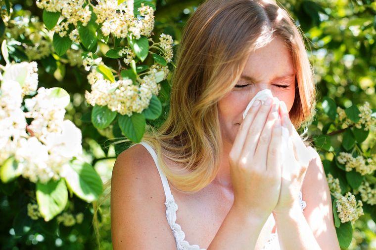alergia al polen en primavera