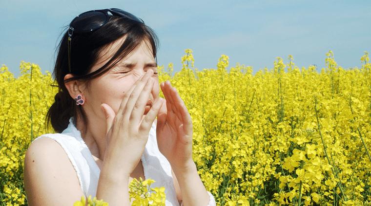 alergia al polen primavera