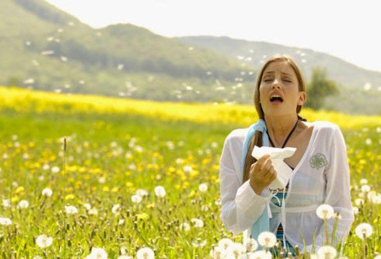 alergia al polen sintomas