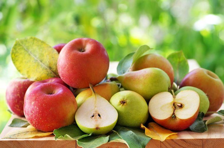 grasa corporal peras manzanas