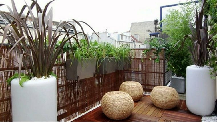 ideas de decoración plantas exterior