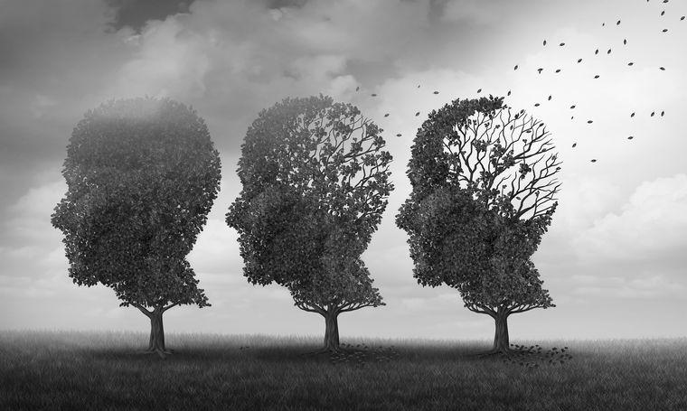 meditación memoria edad