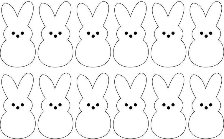 modelo-cuerpo-conejo