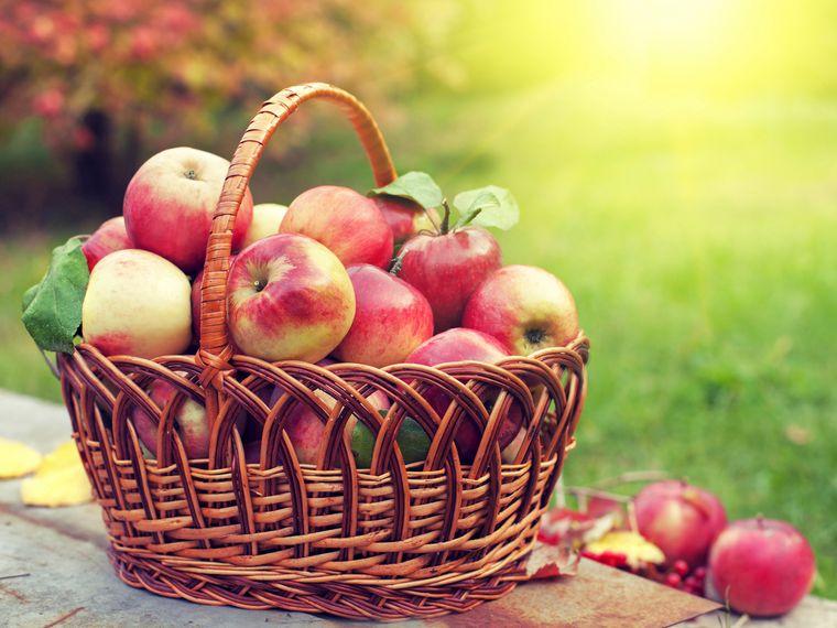 propiedades de la manzana colesterol