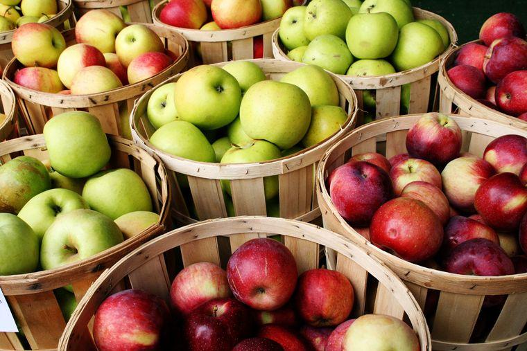 propiedades de la manzana cuerpo