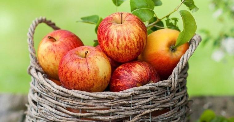 propiedades de la manzana nutriente