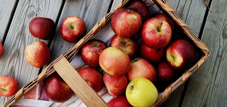 propiedades de la manzana placa dental