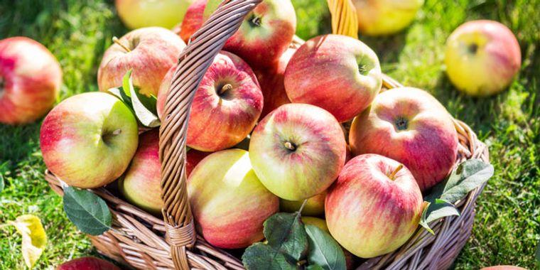 propiedades de la manzana vitaminas