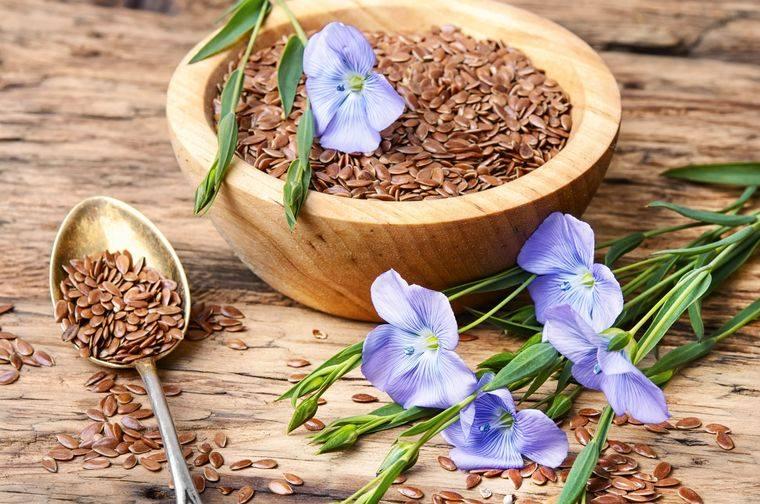 semillas de linaza regula colesterol