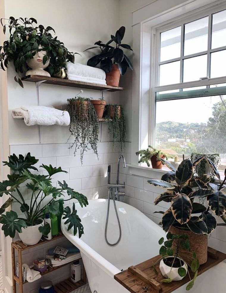 bano-ventana-planta-opciones