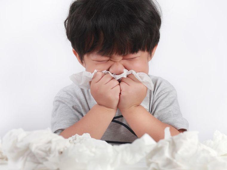 Fiebre de heno o rinitis alérgica en los niños – ¿Cómo tratarla?