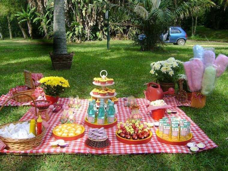 fiesta de cumpleaños picnic