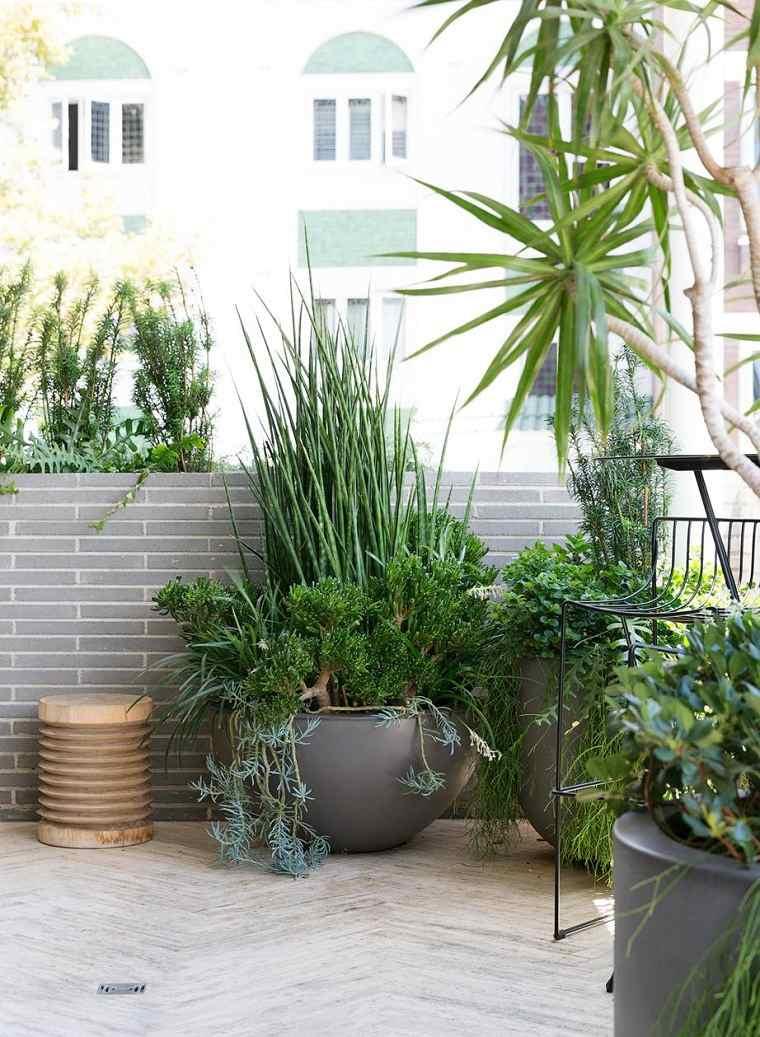 jardin-mantenimiento-plantas-ideas