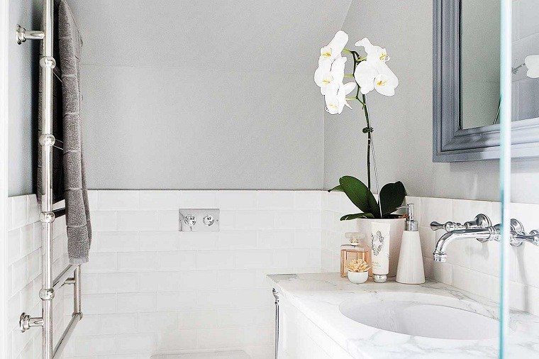 orquidea-blanca-bano-opciones