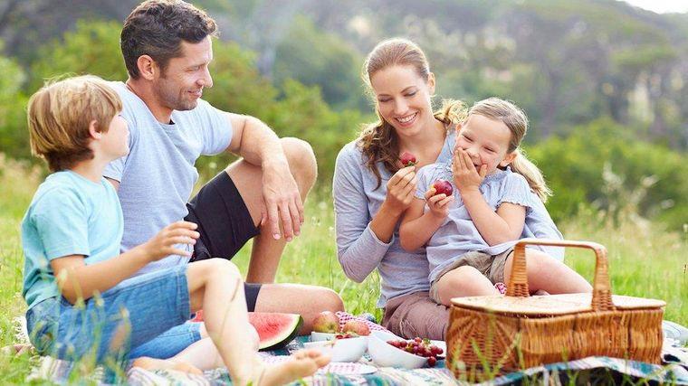 picnic familia