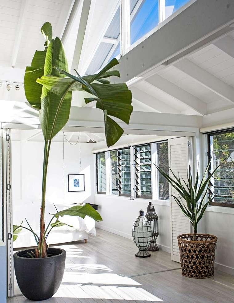 planta-grande-casa-ideas