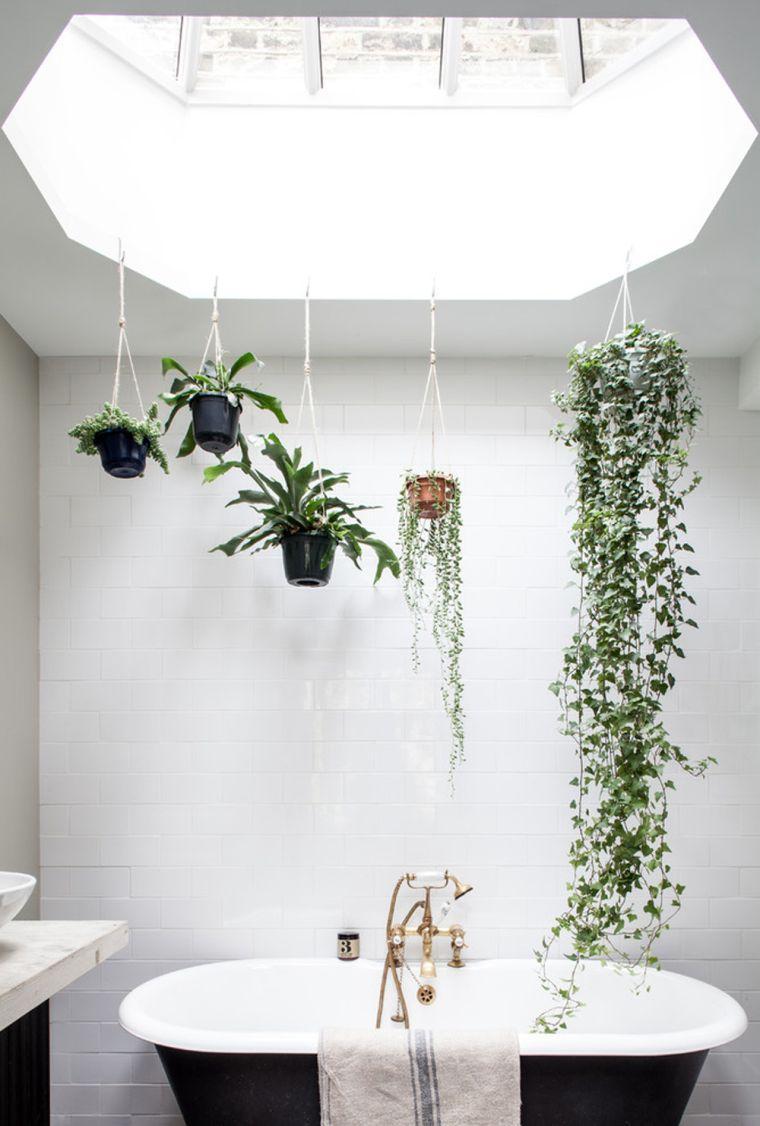 plantas-colgantes-bano-ideas
