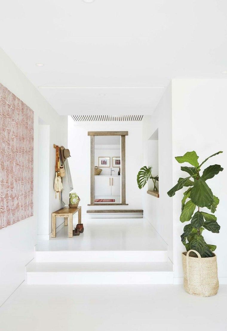 plantas en macetas-diseno-pasillo