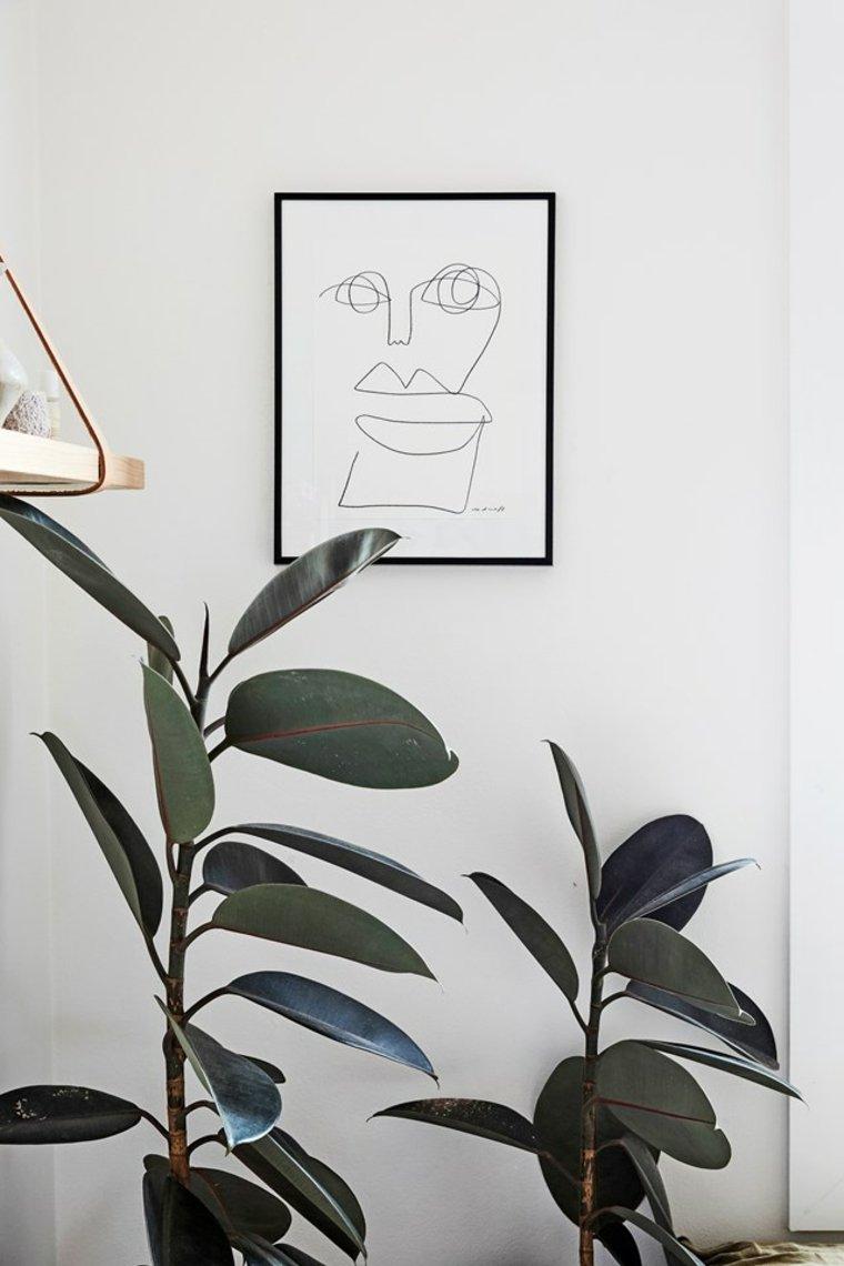 plantas en macetas-interiores-ideas