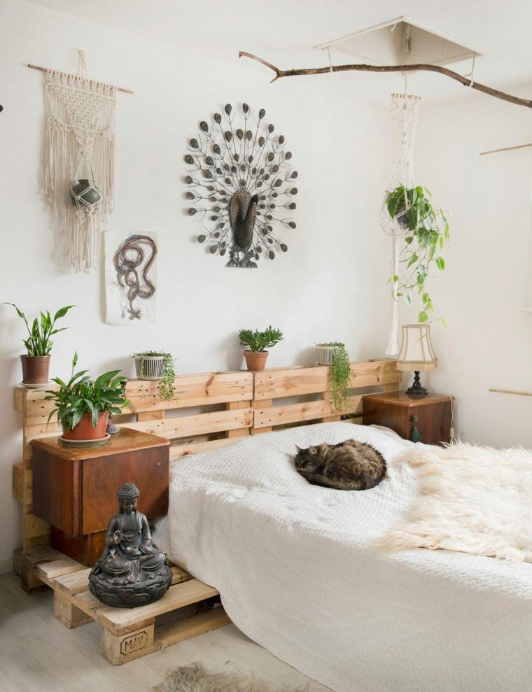 plantas en macetas-opciones-casa