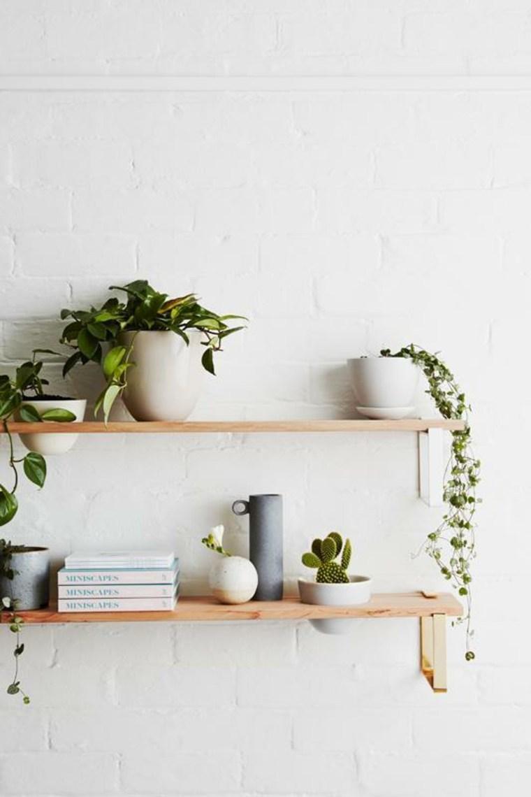 plantas-estantes-opciones-originales