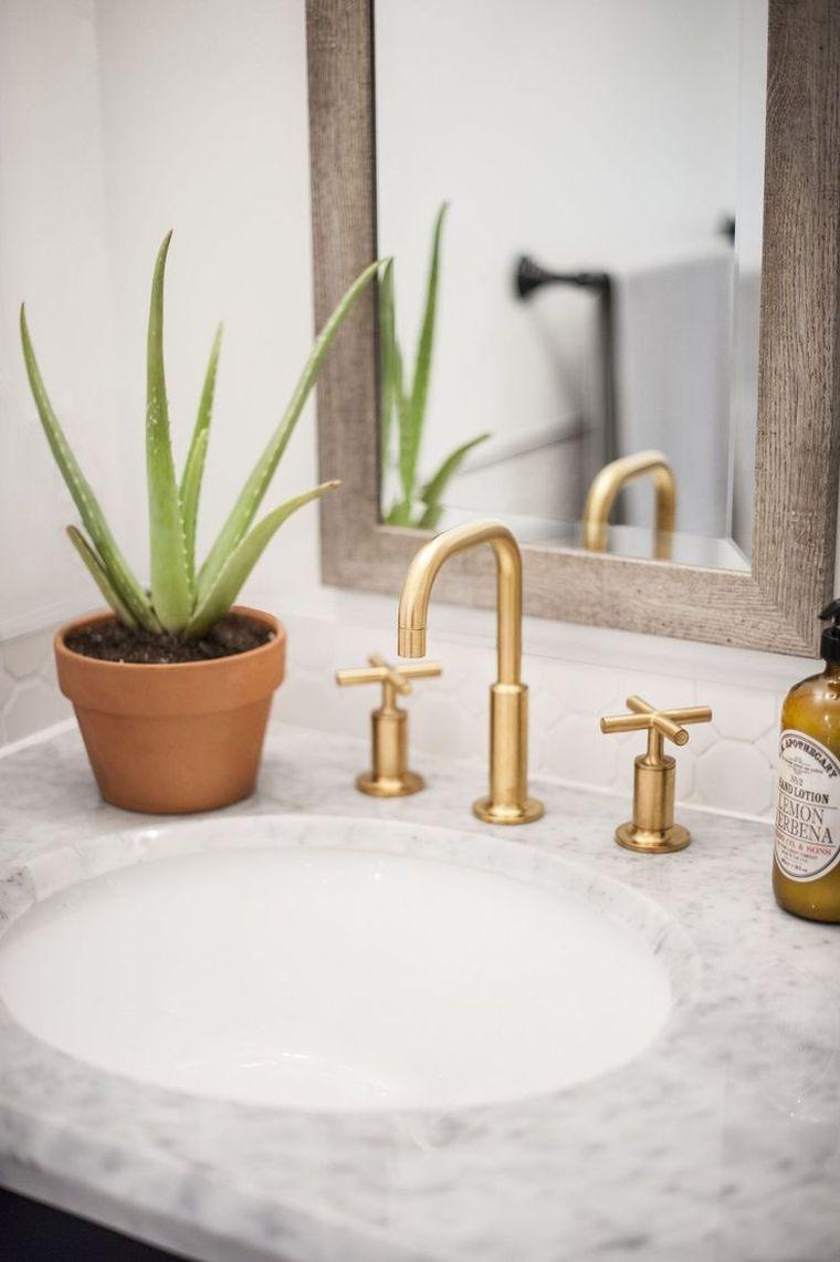 Plantas para el baño -aloe-vera