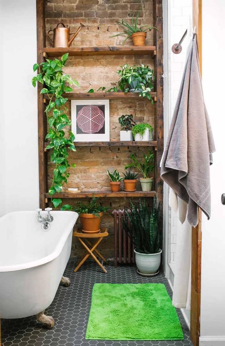 plantas-para-el-bano-estantes-madera