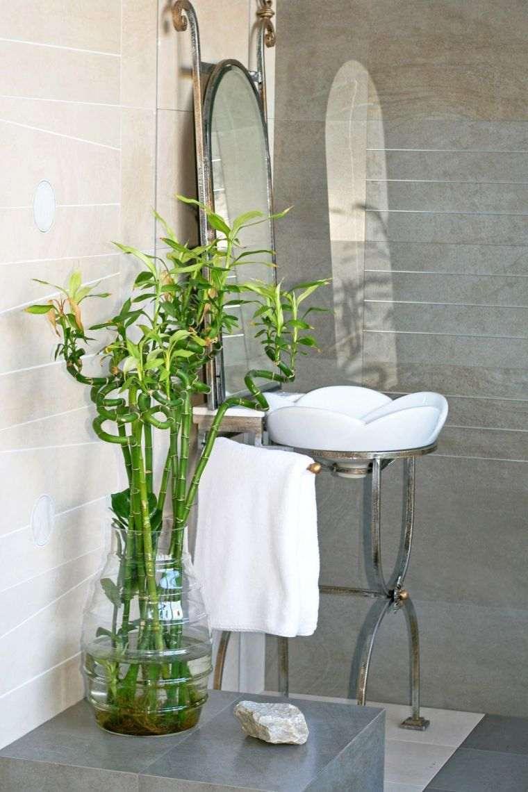 plantas-para-el-bano-ideas