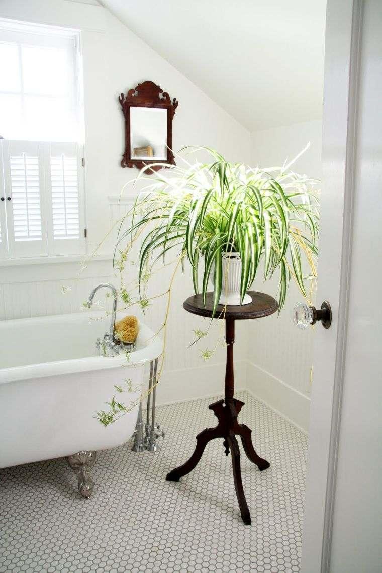 Plantas para el baño mesita-estilo
