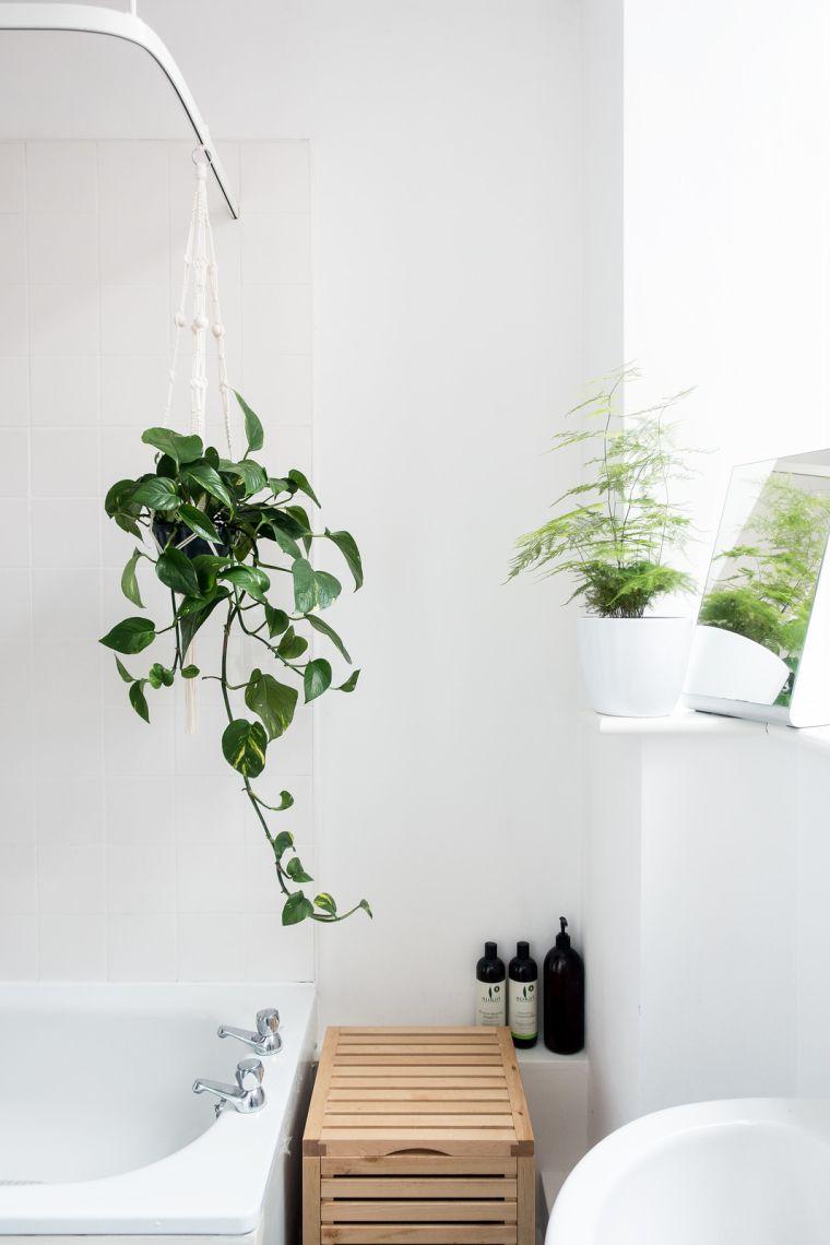 plantas-verdes-opciones-estilo