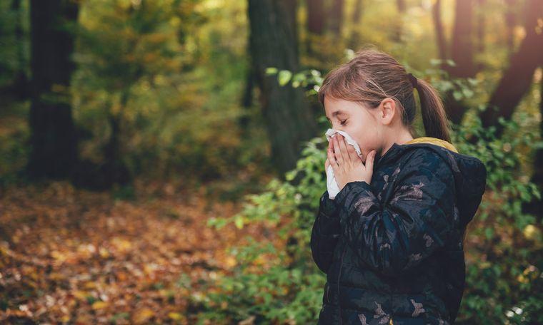 rinitis alérgica al polen