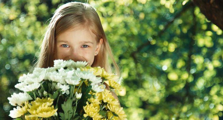 rinitis alérgica alivio
