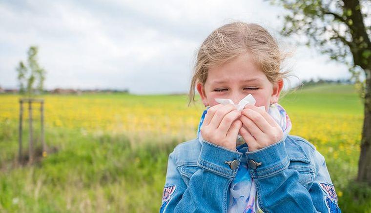 rinitis alérgica comun