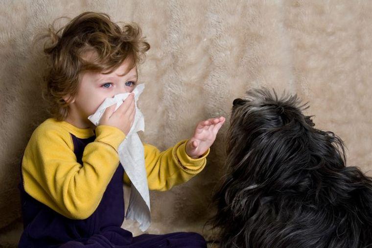 rinitis alérgica mascotas