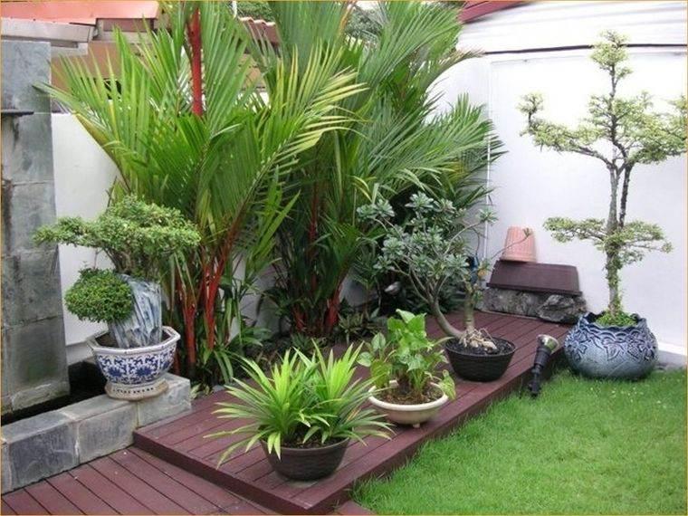 diseño de jardines punto focal