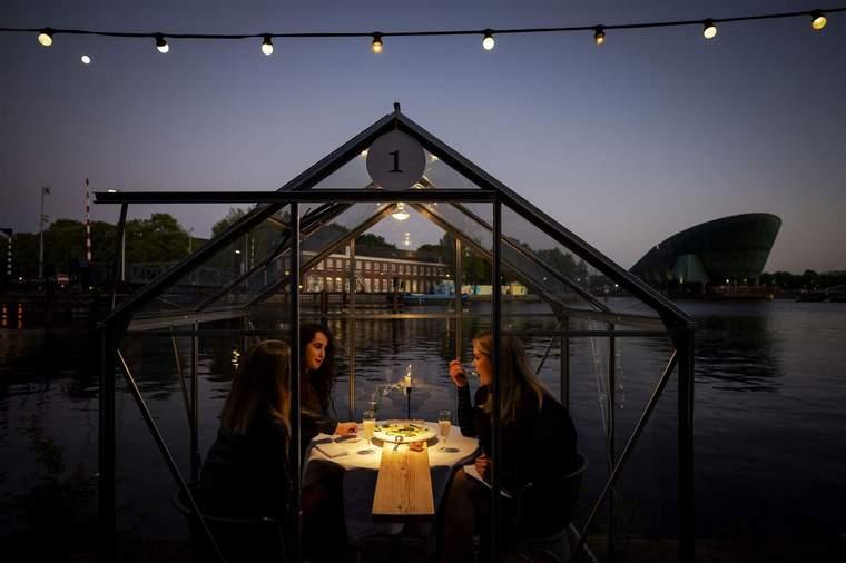 invernadero proteccion restaurante