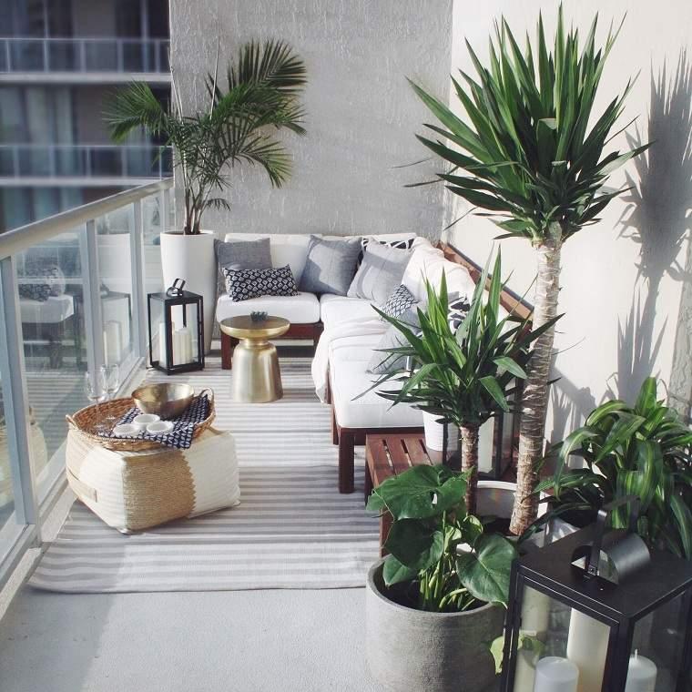 los balcones-plantas-palmeras