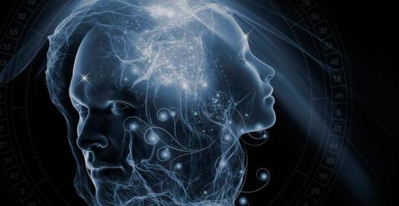 diseño humano relacion universo