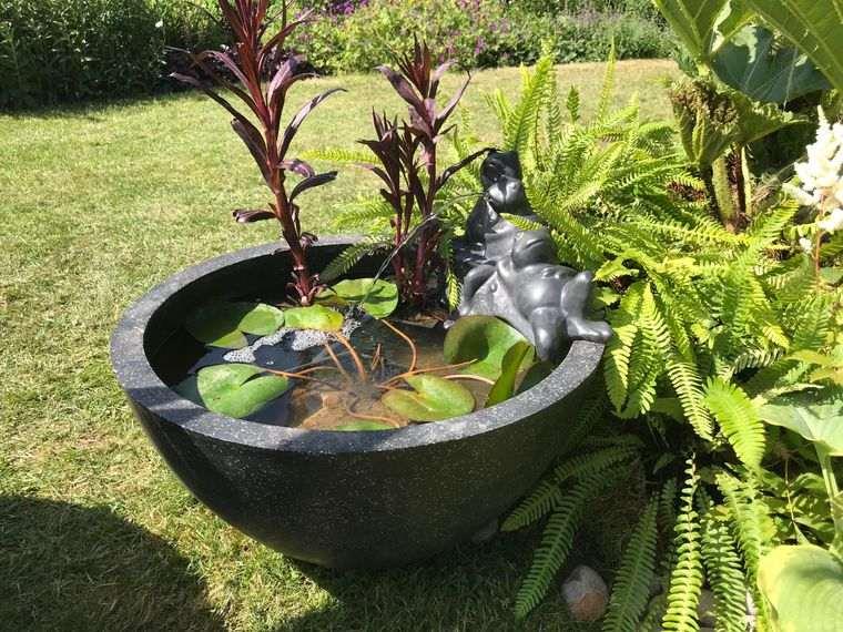 estanque pequeño exterior