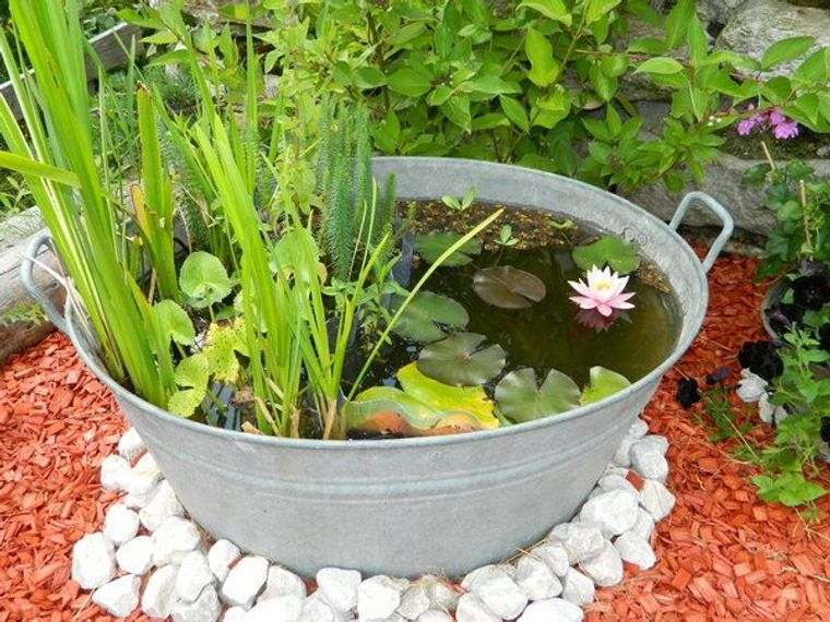 estanque pequeño jardin