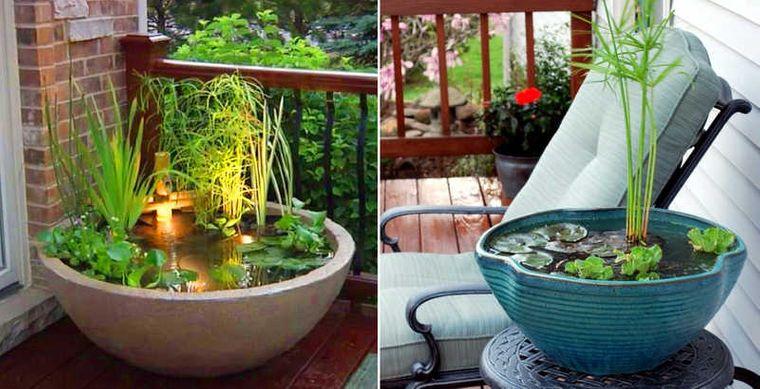 pond small ideas