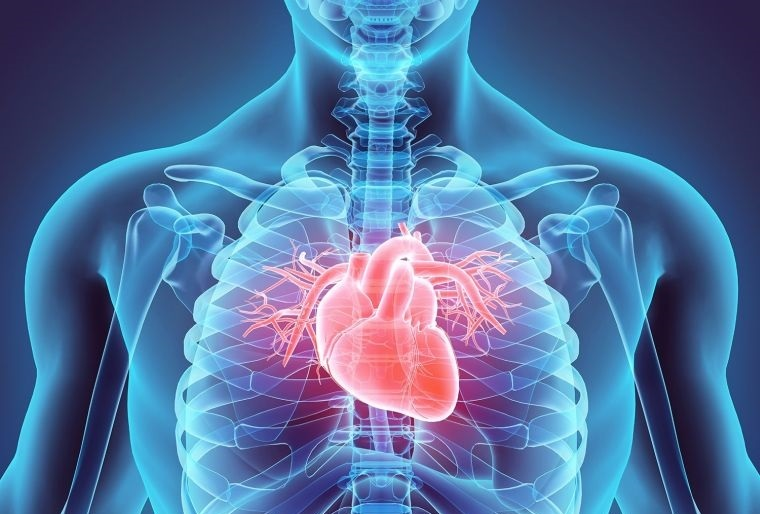 lesiones coronavirus corazon