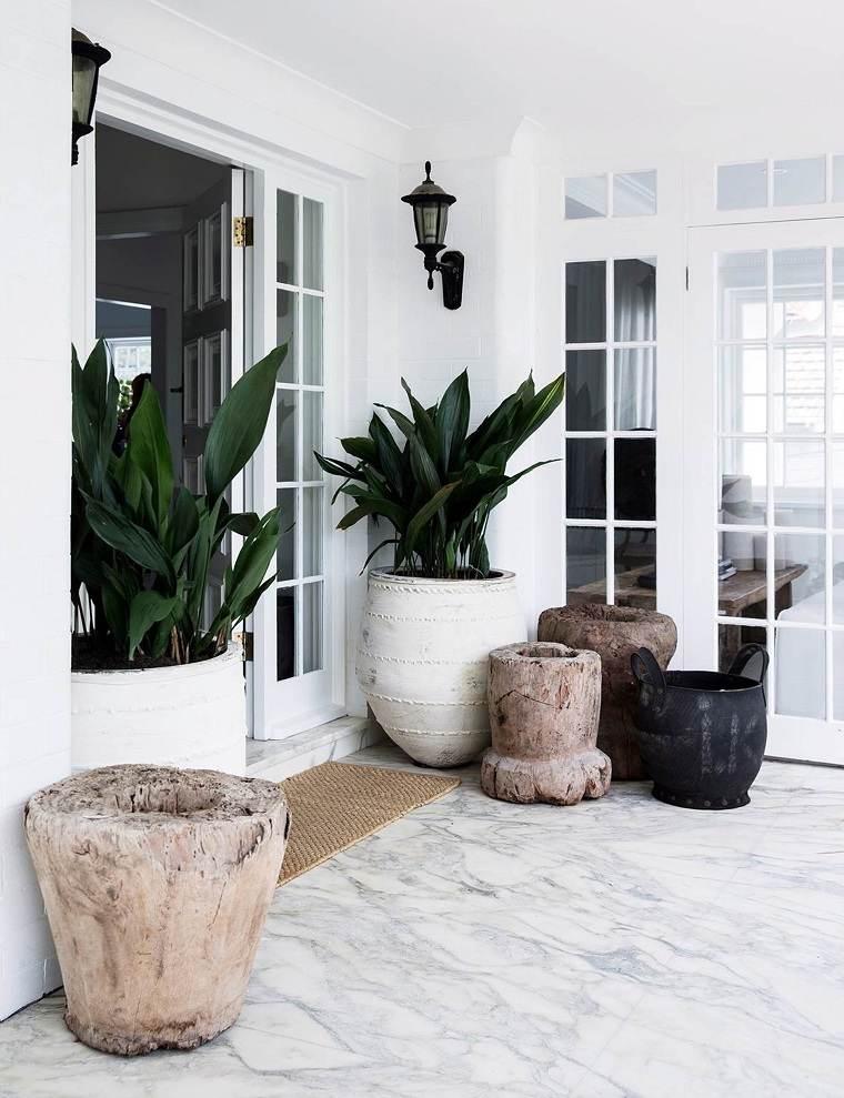 macetas originales-plantas-entrada
