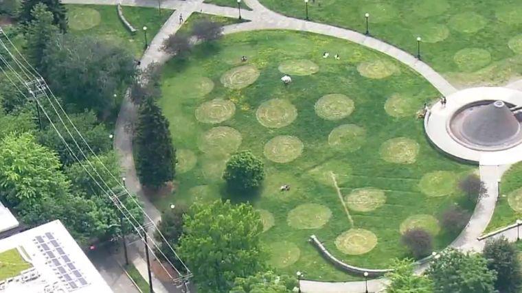 ideas creativas parque