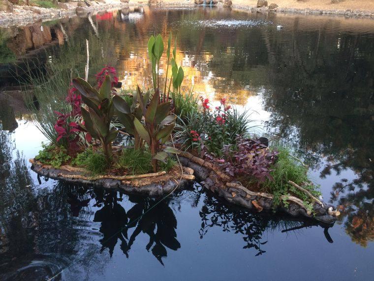 los jardines flotantes en lago