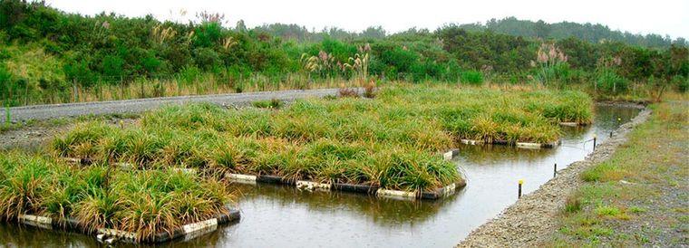 los jardines flotantes islas
