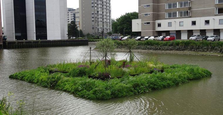 los jardines flotantes rotterdam