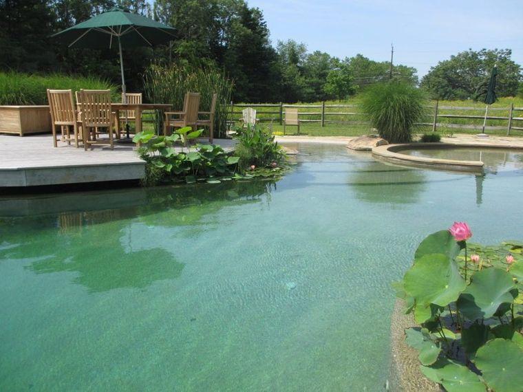 piscina natural agua clara