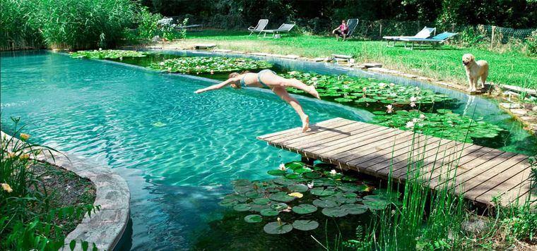 piscina natural bricolaje